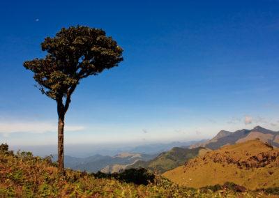 Mount Tadiandamol